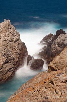 ✮ Point Lobos