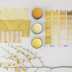 Monday mood board in sunny shades of yellow. So many warm delicious tones - what's your favourite yellow? Test pot colours from the top - Resene Buttercup, Resene Moonbeam and Resene Paris Daisy #Reseneyellows #Resene #mondaymoodboard #resenemoodboard