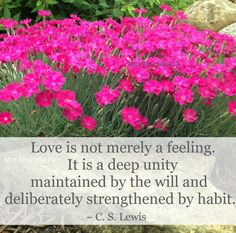 """Love is not merely a feeling. It is a deep unity maintained by the will and deliberately strengthened by habit."" ~ C. S. Lewis #quote"