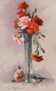 Carnations in vase, Catherine Klein Catherine Klein, Floral Illustrations, Botanical Illustration, Still Life Flowers, Oil Painting Flowers, Shabby Flowers, Victorian Art, Carnations, Watercolor Flowers