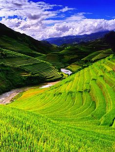Mu Cang Chai, a district of Yen Bai Province in the nation's northern upland, has become one of the most popular destinations for travelers and photographers to capture beautiful images of terrace rice fields and daily activities of ethnic minority peoples. #TRavel #Vietnamtravel #Placetovisit #Tour