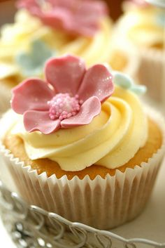 cupcakes yellow and pink
