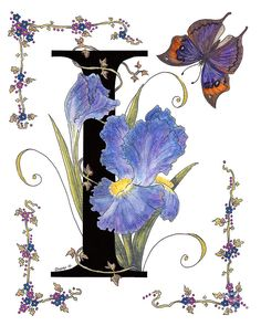 Iris And Indian Leaf Butterfly - Stolen Painting by Stanza Widen