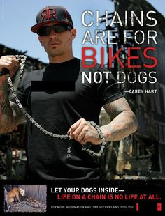 Chains are for bikes, not dogs ...