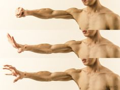 Love this example of muscle definition