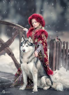 Siberian Husky – Outgoing and Cheeky Husky Photos, Dog Photos, Dog Test, Video Clips, Russian Folk, Foto Art, Baby Puppies, Family Dogs, Baby Animals