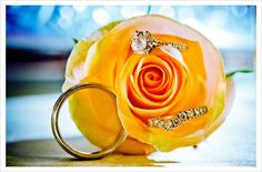 A beautiful photograph of the wedding rings that incorporates the flowers. A shot with the bride's bouquet would be beautiful. Find more Real Weddings at the Wedding Paper Divas blog.