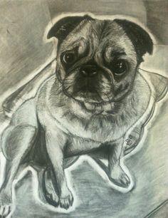 Custom Black and white charcoal art pet drawing 11x14. Gabby the dog. Drawn by me, DJB.