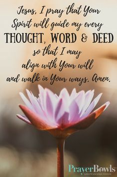 Jesus, i pray that Your Spirit will guide my every thought, word and deed, so that i may align with Your will and walk in Your ways.  Amen.