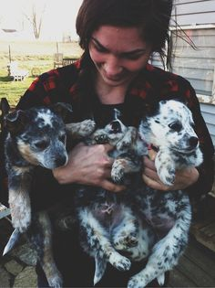 girls who love dogs - specifically, blue heelers in this girls case.