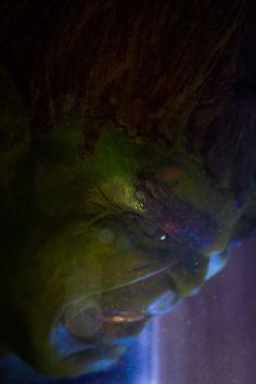#Hulk #Fan #Art. (Hulk Clay and Acrylic) By: Javier Cistari. ÅWESOMENESS!!!™ ÅÅÅ+
