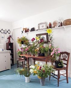 Wild at Heart: Inside Floral Designer Amy Merrick's New Hampshire Family Home and more on MarthaStewart.com