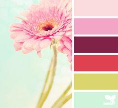 gerbera hues Color Palette by Design Seeds Design Seeds, Colour Schemes, Color Combos, Color Patterns, Arte Floral, Logo Design, Color Stories, Grafik Design, Color Swatches