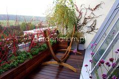 Ogrody na dachu - zielone dachy - Gardenarium
