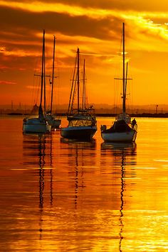 Sailing Yacht Charter - Search for Yachts and Catamarans Beautiful Sunset, Beautiful World, Beautiful Images, Beautiful Beaches, Sunset Beach, Belle Photo, Wonders Of The World, Cool Photos, Amazing Photos