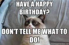 Resultado de imagen para grumpy cat birthday español