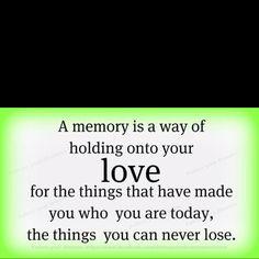 never lose...