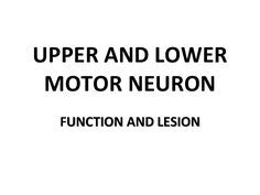 Upper lower motor neuron