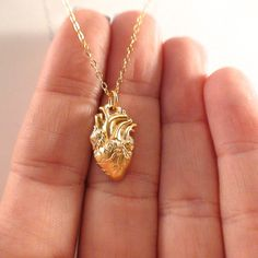 - Gold Plate Sterling Silber Anatomical Heart Halskette,… - DIY J. - – Gold Plate Sterling Silber Anatomical Heart Halskette,… – DIY J… – Gold Plate Sterling Silber Anatomical Heart Halskette,… – DIY Jewelry – Cute Jewelry, Jewelry Accessories, Jewelry Necklaces, Jewelry Design, Gold Bracelets, Diy Jewelry, Jewlery, Heart Necklaces, Heart Jewelry
