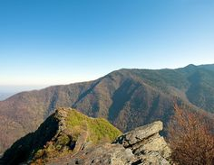 Chimney Tops Vista in Great Smoky Mountain National Park, Tennessee. Best hiking trail ever.
