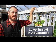 Bringing pH Down in Aquaponics Systems