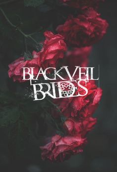 Black Veil brides and roses.