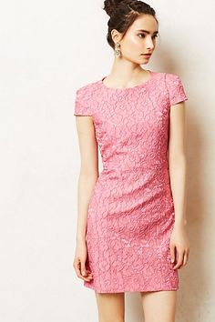 Roze Jacquard Shift #anthropologie #anthrofave