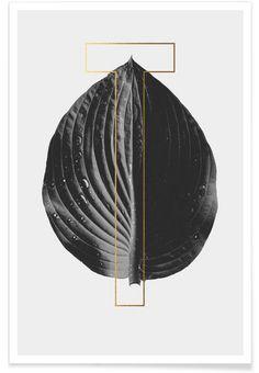 Plants T - typealive - Premium Poster