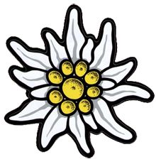 edelweiss flower...different colors of course