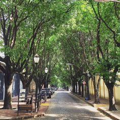 Rua 5 Araraquara