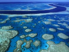 Great Barrier Reef, Australia -- I love the water, I love to snorkel. Hopefully I'll get to do it here!