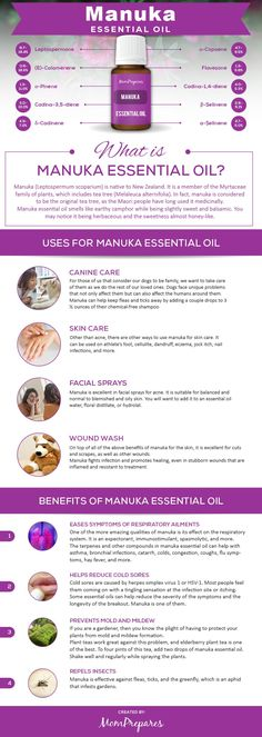 Manuka essential oil has many wonderful uses and health benefits such as for fighting infections and repelling insects. This guide covers the research and facts behind this powerful oil. via @momprepares