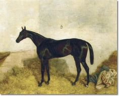 Equine Equestrian Horse Painting Print by Harry Hall