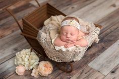If I ever had the thought of keeping someone's baby this one might would be it lol! Newborn Photographer, Bassinet, Lol, Baby, Photography, Photograph, Photography Business, Babies, Photoshoot