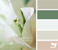 Wedding colors.. love the cool and soothing colors.
