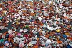 poverty in india essay In world's poorest slums, landfills and polluted rivers become a . Water Pollution, Plastic Pollution, Poverty In India, Social Media Advantages, Shirley Jackson, Flotsam And Jetsam, Urdu Stories, School Essay, Essay Questions