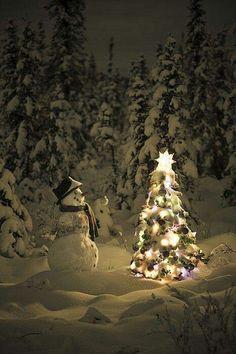 Sweet little Snowman & a Sweet little Christmas Tree :) Christmas Scenes, Noel Christmas, Christmas Images, Little Christmas, Country Christmas, All Things Christmas, Winter Christmas, Christmas Lights, Christmas Decorations