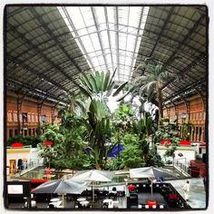 Estación de Atocha. Nave Central y jardín tropical interior. Foto: Manuel Galindo