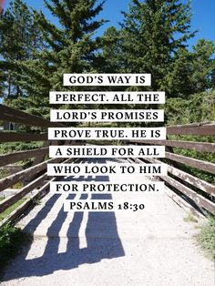 God's way is perfect. All the Lord's promises prove true. He is a shield for all who look to Him for protection. Prayer Scriptures, Bible Verses Quotes, Jesus Quotes, Faith Quotes, Healing Scriptures, Heart Quotes, Soli Deo Gloria, Was Ist Pinterest, Spiritual Quotes