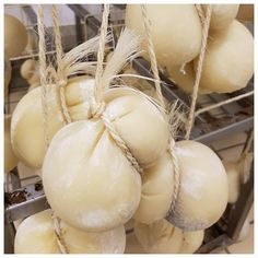 #Scamorza Beautiful Beaches, Onion, Garlic, Vegetables, Comme, Places, Food, Trout, Fine Dining