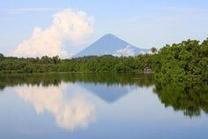 NTT INDONESIA