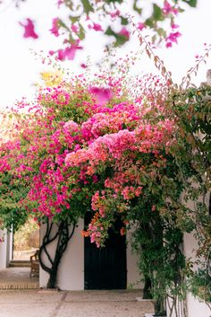 A Countryside Escape At Hacienda San Rafael in Spain - Gal Meets Glam Beautiful Gardens, Beautiful Flowers, Landscape Design, Garden Design, Best Flower Delivery, Cheap Flowers, Gal Meets Glam, Back Gardens, Flowers Nature