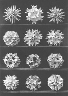 Max Bruckner 1906 polyhedra