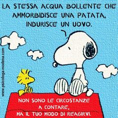 giudizi, reazioni e punti di vista Charlie Brown Peanuts, Quotes White, Snoopy And Woodstock, Calvin And Hobbes, My Mood, Powerful Words, Emoticon, Funny Images, Cool Words