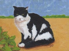 """NFAC Black and White Cat Acrylic Painting on 4"""" x 3"""" x 3/8"""" Canvas SFA #Realism"""