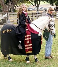 Harry potter horse costume for Halloween! #stylemyride @SMRequestrian stylemyride.net
