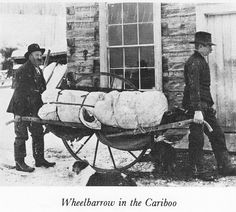 Wheelbarrow in the Cariboo