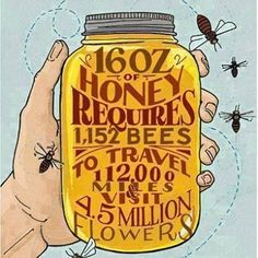 Makes me love it that much more. Save our precious bees..