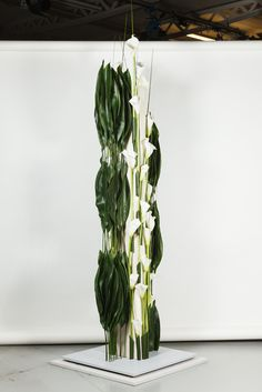 WAFA 2014 Modern Floral Design, Floral Designs, Flower Show, Flower Art, Corporate Flowers, Bouquet, Design Ideas, Design Inspiration, Art Floral