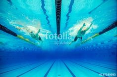 swimming competition in a pool